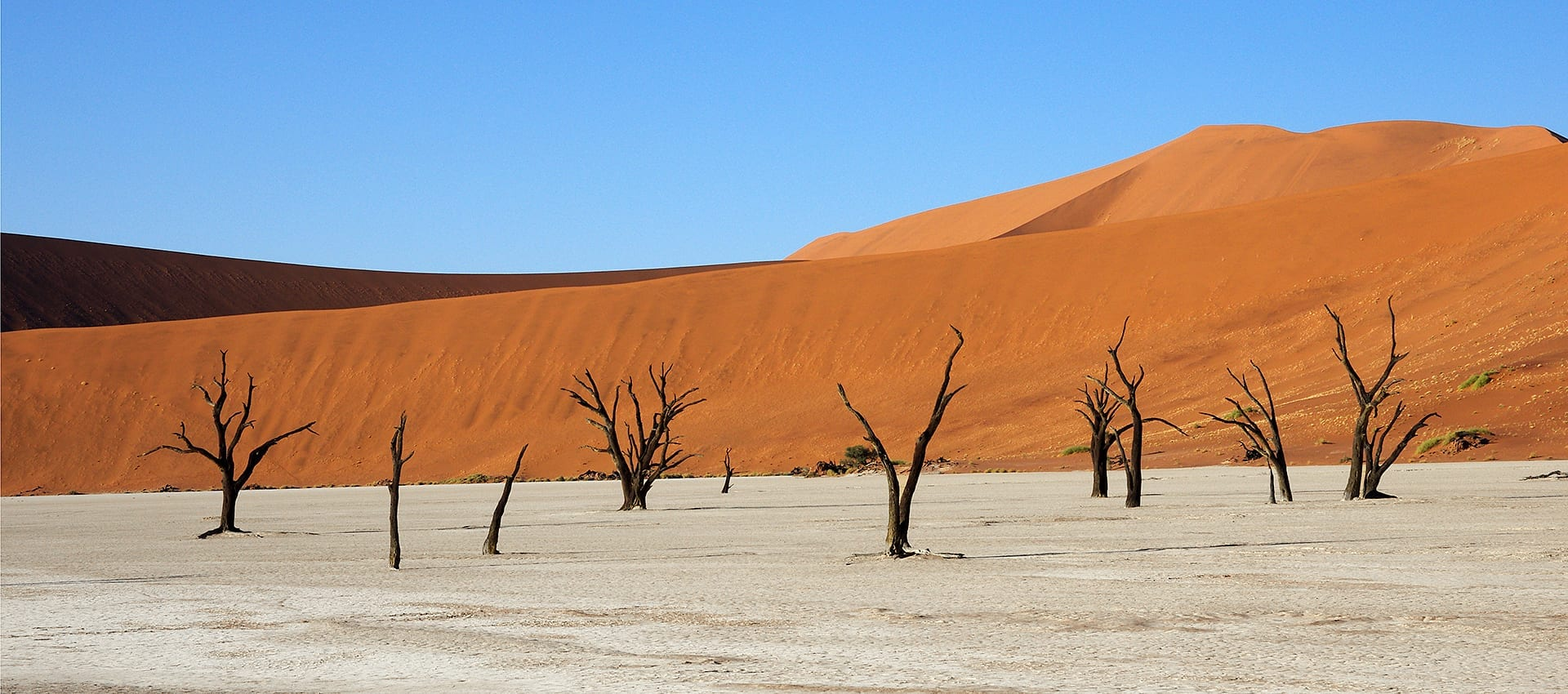 brochure van de motorreis door Namibie en Zuid-Afrika, door Sossusvlei en Ethosha Trans Desert Motor Challenge