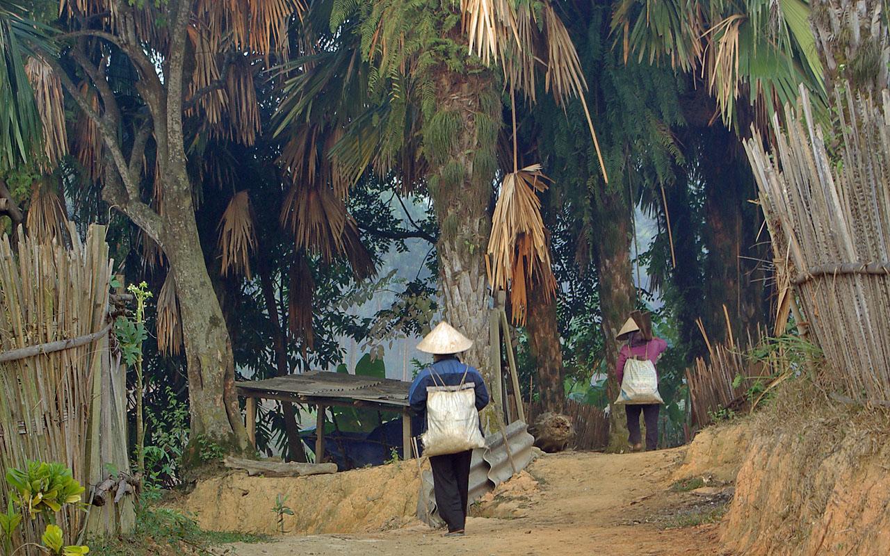Ban Gioc watervallen tijdens de motorreis door Noord-Vietnam met Travel 2 Explore