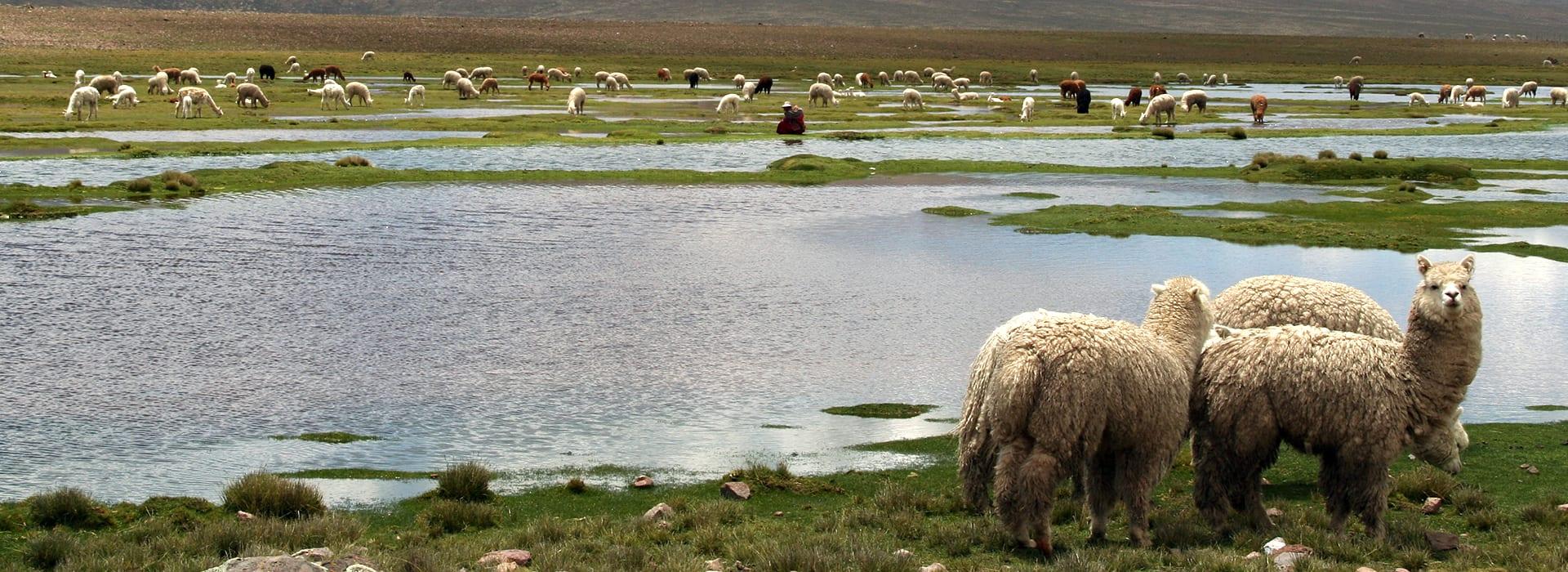 Pilotreis van de motorreis in Peru vertrek 08-04-2020 van Travel 2 Explore Motorreizen