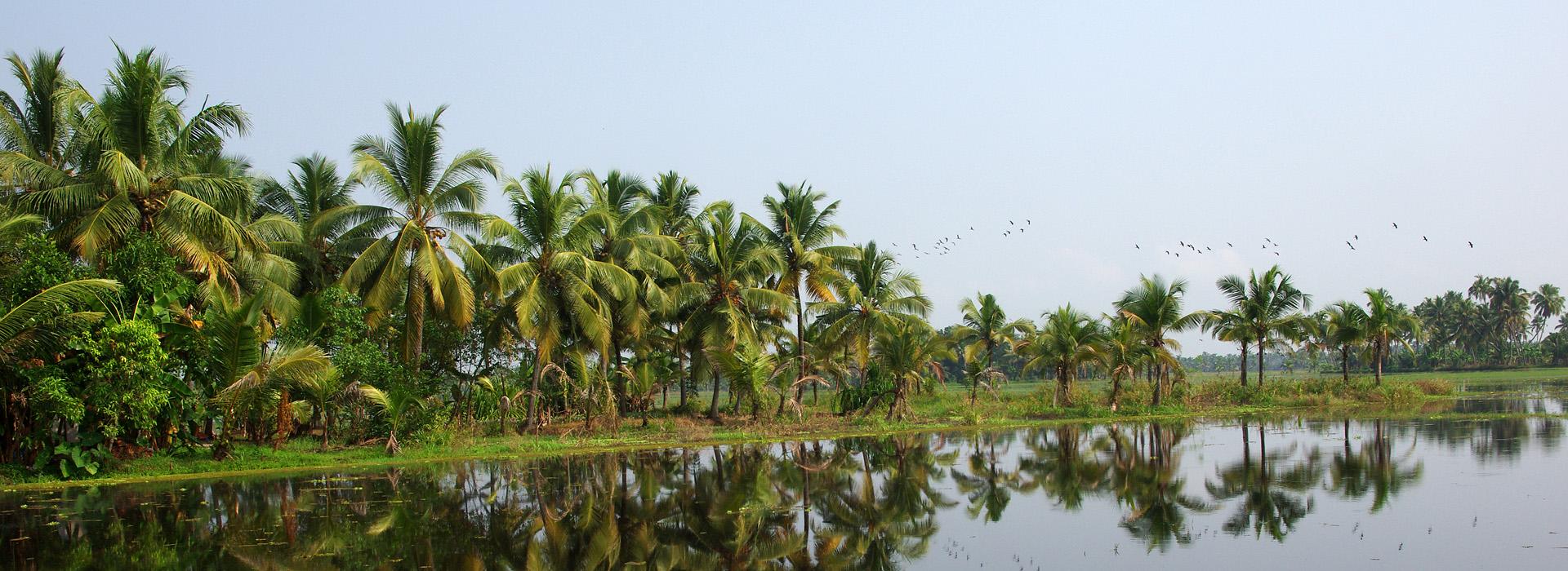 Motorreis Zuid India voor de avontuurlijke motorrijder die ook kan genieten van de culturele rijkdom van Zuid-India. Een motorreis van Travel 2 Explore motorreizen